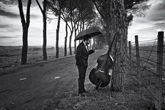 last poet (alfredodigiorgio) Tags: street musician artist music contrabass jazzmusic picture photograph blackwhite last poet jazzmusician streetart