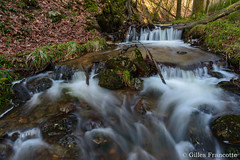 Chefna river (gillesfrancotte) Tags: 2017 amblève ardennes aywaille chefna d800 nikon outdoor quarreux stoumont cascade creek eau fall landscape longexposure nature printemps spring stream torrent water waterfall waterscape wallonie belgique