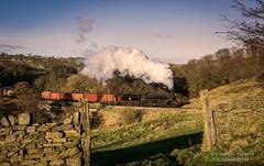 D81_3443-Edit.jpg (inspiring.images) Tags: b1 bongo mytholmes kwvr steam train freight br 61264