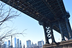 New York/ nature/ nurture