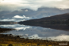 "Loch Eil. (Scotland by NJC.) Tags: mist haze fog vapour shrouded veiled ضَبَابٌ névoa 薄雾 izmaglica mlha tåge neblina usva brume ""leichter nebel"" καταχνιά foschia もや 안개 tåke mgiełka coastline shoreline seashore coast shore seaboard seaside beach strand mountains hills highlands peaks fells massif pinnacle ben munro heights جَبَلٌ montanha 山 planina hora bjerg berg montaña vuori montagne βουνό montagna fjell"