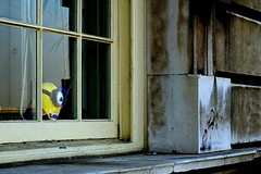 Bite! (Breboen) Tags: window vampire teeth bite puppet minion yellow wall look inside greenwich fun joke scare london animated