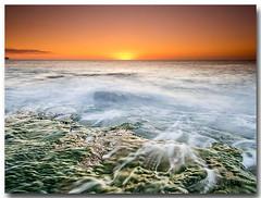 En mares violentos (Carpinet.) Tags: mar sea landscape amanecer dawn puestasol naranja olas ola rocas algas island spain sol sunset sun sunrise thesun olympus esolympus seda efectoseda