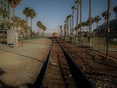 DT San Diego 3-'17 (36) (steven p wingen) Tags: stevenpwingen downtownsandiego sandigo socal gaslampdistrict gaslamp gaslampsandiego
