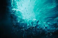 Frosty Dreams (ricdovalle) Tags: gelo ice gelado sonhos dereams frosty azul blue ciano cyan abstrato abstract sony alpha a6000 macro sel30m35