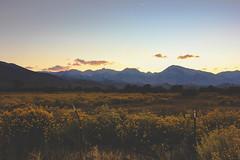 dusk in bishop (explored 4/4/17) (naaandrea) Tags: bishop bishopca highway395 easternsierras sierranevada