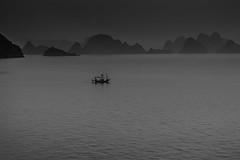 Ha long Bay ( Philippe L PhotoGraphy ) Tags: cambodge saigonhanoi asiedusudest asie vietnam thànhphốhạlong quảngninh vn