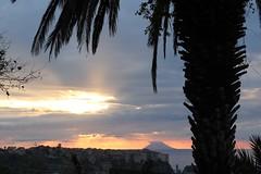 Stromboli al tramonto! (Anfora di Cristallo) Tags: sole nuvola palma vulcano stromboli isola eolie