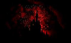 Disney Firework (Ake Alex) Tags: nikon firework disney d800 24mm14g