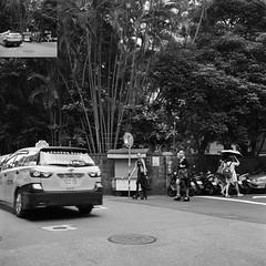 downtown forest (Molaroid909) Tags: street taipei tmy rolleiflex35fplanar