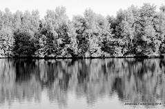 Insel im Heidesee (grafenhans) Tags: white black minolta sony 40 af 55 weiss spiegelung schwarz heidesee 3570 slt55