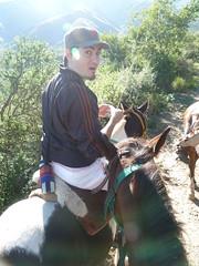 San Javier horseriding