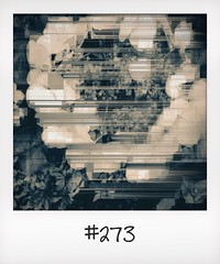 "#DailyPolaroid of 28-6-14 #273 • <a style=""font-size:0.8em;"" href=""http://www.flickr.com/photos/47939785@N05/14682345462/"" target=""_blank"">View on Flickr</a>"