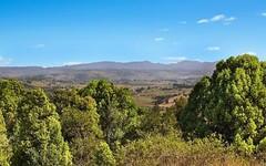 289 Cowlong Road, Mcleans Ridges NSW