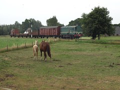 Local freight at Beekbergen, August 2, 2014 (cklx) Tags: amsterdam 600 500 excursion apeldoorn beekbergen vsm 9802 9908 locon traintour bakkies railexperts