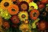 LES MARCHES DE PROVENCE (Gilles Poyet photographies) Tags: fleurs bouquet provence soe autofocus nyons rhônealpes aplusphoto drômeprovençale artofimages rememberthatmomentlevel1 rememberthatmomentlevel2 rememberthatmomentlevel3