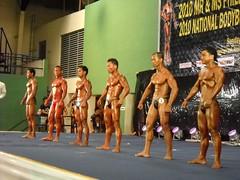 pfbb2010-65-