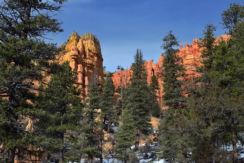 Pink Ledges in Red Canyon
