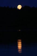 20140812-IMG_4327.jpg (dr_knox) Tags: moon deutschland mond moonrise mecklenburgvorpommern objekt mondaufgang ereignis feldbergerseenlandschaft dreetzsee2014