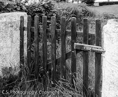 DSC_4113 (ilovesheep12) Tags: old white black garden gate worn weathered