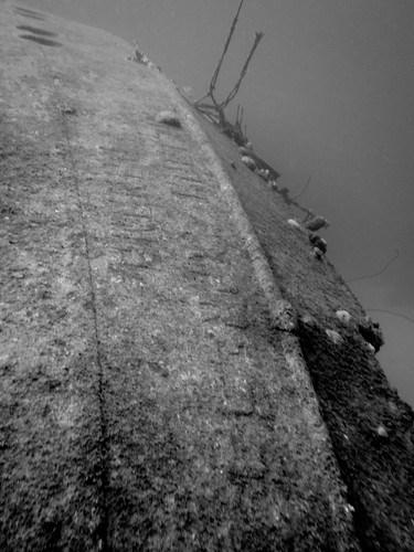 the hull of the hilma hooker