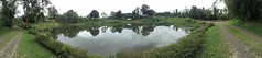 Relax (a1234barrientos) Tags: flowers trees panorama lake photography view path spot hobby bacolod pathway rancho beginner touristspot bacolodcity manmadelake negrosoccidental negrosisland bantuglake