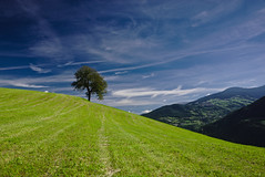 blue mountain tree green grass lines clouds südtirol