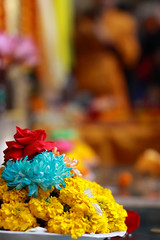 India_0095