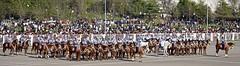 Gran Parada Militar 2014 Chile (alobos Life) Tags: chile santiago caballos desfile militar gran parada ejercito 2014 escaln granaderos caballera regimiento