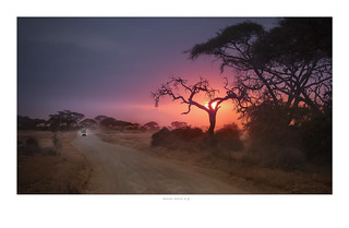 sunrise in masai mara