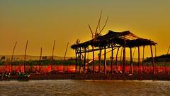 Evening at Lake Tempe (Sulawesi) (flowerikka) Tags: sunset fishing sulawesi sengkang houseboats stilthouses laketempe seenomads