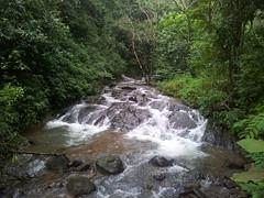 ChorlaGhat (merqri) Tags: road india green monsoon chorla