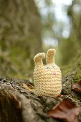 Mini Figs adventures (heatherfyfe.fotos) Tags: park trees macro rabbit bunny green nature 35mm woodland toy toys woodlands nikon knitting dof bokeh knitted plushtoy bunnyrabbit knittedbunny d7000 nikond7000 cuddytoys knittenrabbit