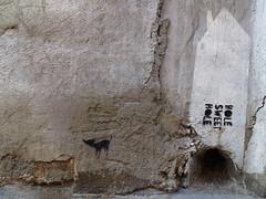 hole sweet hole (maximorgana) Tags: cat hole dirty cartagena