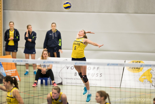 "5. Heimspiel vs. TV Gladbeck • <a style=""font-size:0.8em;"" href=""http://www.flickr.com/photos/88608964@N07/32003096833/"" target=""_blank"">View on Flickr</a>"