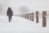 fourth post (Marc McDermott) Tags: person fence snow rope canada weather beautiful clean white trees shallow depth field f2 ef 135mm ef135mmf2lusm selfie tripod timer canon snowstorm cold winter