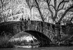 Under  the Gapstow Bridge [Explored] (C@mera M@n) Tags: blackandwhite centralpark gapstowbridge monochrome ny nyc newyork newyorkcity newyorkphotography people places snow thepond urban winter outdoors peoplewatching urbanlife
