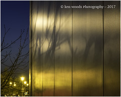 2017_365-74 - A Light Sheen (Kenny Boy1) Tags: reflections shadows office lights trees chatham 365 2017 march
