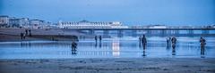 Capturing low tide at Hove Sussex (prueheron) Tags: sea ocean tide lowtide pier brightonpier palacepier photographers bluehour landscape