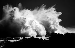 Les amants passagers... (Sabine-Barras) Tags: bw wave vague océan ocean monochrome bnw blackandwhite sea mer waterscape réunion eau water