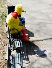 Alone on a Park Bench-0061-April 02, 2017 (Scott Yeckes) Tags: bigbird birds nyc newyork nostalgic bigbirdonaparkbench centralpark centralparknyc creepy manhattan mysterious nostalgia oldschool onlyinnewyork sesamestreet spooky streetphotography yellow