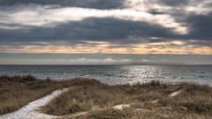 Falsterbo (s_p_o_c) Tags: sverige sweden skåne vellinge vellingekommun falsterbo skanör strand sanddynor dunes sanddunes beach beachdunes landscape landskap cloudy cloudyday molnigt
