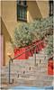 Hotel El Convento (SamyColor) Tags: canoneos20d canoneos28105usm lightroom3 colorefexpro4 escaleras stairs hotelelconvento sanjuan oldsanjuan viejosanjuan puertorico arquitectura arquitecture color colori colorido colores colors colours