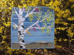 Maibirke (Lizinnie) Tags: birke birchtree maibaum frühling spring applikation rawedge zaungucker