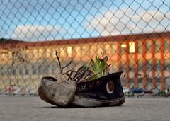 Street Poetry (Erre Taele) Tags: urban poetry poesia calle rochapea rotxapea iruña