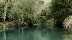 "The Silent Pool (Stephen Reed. ""Over 1 Million Views Thanks"") Tags: silentpool aqua green lake pond water surrey naturesfinest naturalbeauty countryside lightroomcc photoshopcc d7000 nikon"