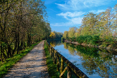 Bicycle track along the Villoresi canal (clodio61) Tags: europe italy lombardy milan villoresi autumn bicycle canal color day fall fence green nature october outdoor pedestrian photography plant road track tree water wood fuji fujifilm xt2 xf 1855mm