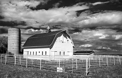 down on the farm (eDDie_TK) Tags: colorado co larimercountyco larimercounty bouldercountyco bouldercounty berthoudco longmontco farming farms rural rurallife ruralliving barns whitebarns blackandwhite bw