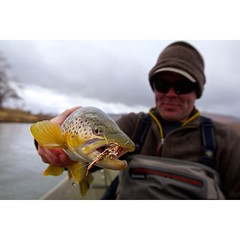 Rainy days don't get us down... @scottflyrods @dirtywaterflyco @simmsfishing #northplatteriver #flyfishing #greyreef #fishwyoming #wyoming #browntrout