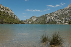 Majorka (x-oph) Tags: spain mallorca majorca balearicislands majorka hiszpania morześródziemne baleary